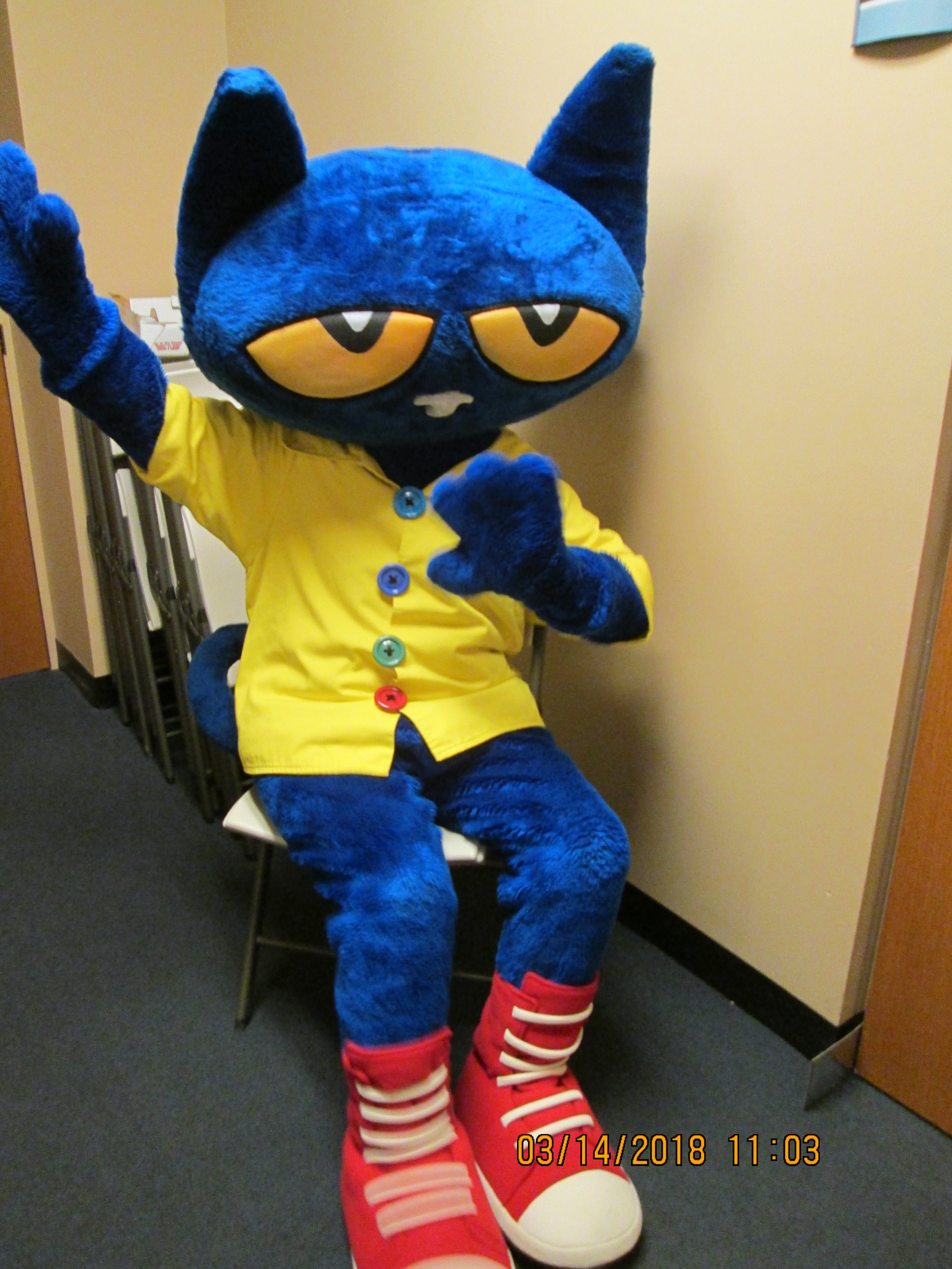 Pete The Cat Story Time